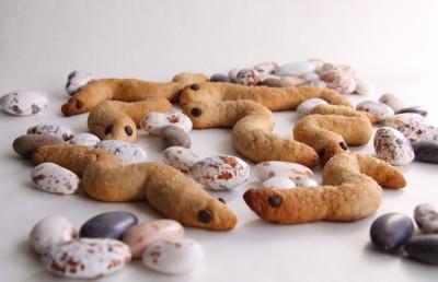 biscotti-serpentosi