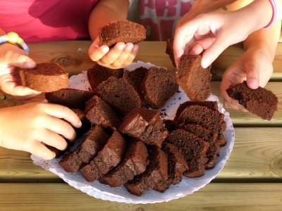 torta-cioccolato-fibre